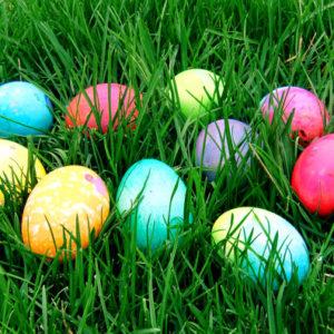 San Leanna Egg Hunt